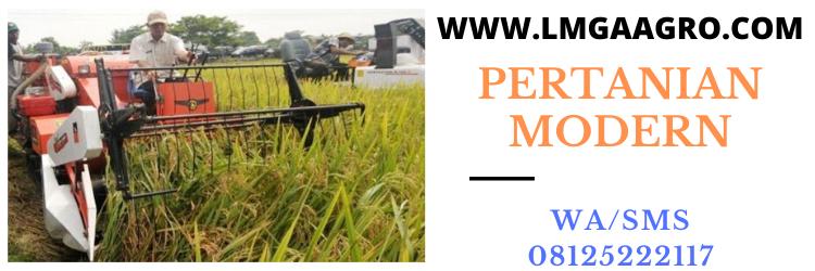 pertanian, modern, pertanian modern