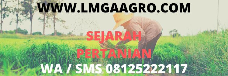 sejarah, pertanian, lmga agro, pertanian indonesia, peradaban