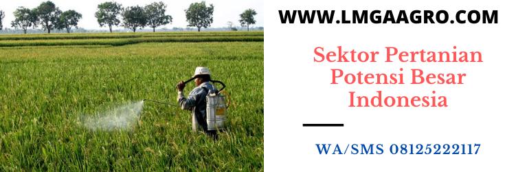 sektor, pertanian, sektor pertanian, indonesia, online, toko online, lmga agro