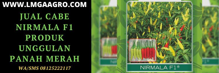 panah merah, cap panah merah, eastwestseed, east west, cabai, cabe, nirmala, f1, nirmala f1, benih, bibit, jual