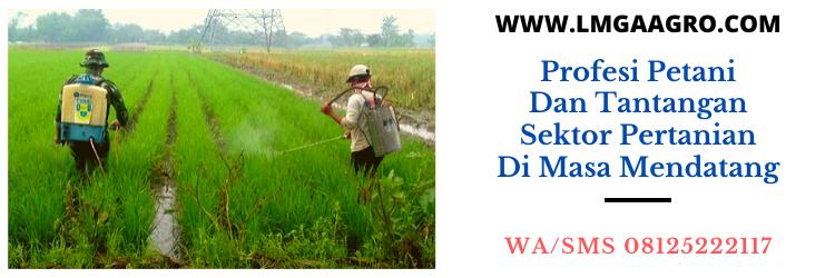 Profesi Petani dan Tantangan Sektor Pertanian di Masa Mendatang
