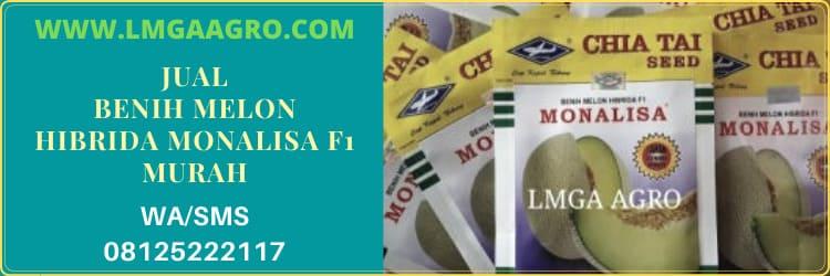 jual, benih melon hibrida, monalisa f1, melon hibrida monalisa, murah, harga murah, online, termurah, berkualitas