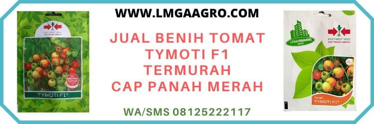 panah merah, cap panah merah, ewindo, eastwestseed, east west seed indonesia, tomat hibrida tymoti, murah, berkualitas, terpercaya