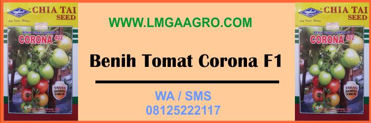 benih, tomat, corona, f1