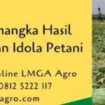Budidaya Semangka Hasil Menguntungkan Idola Petani