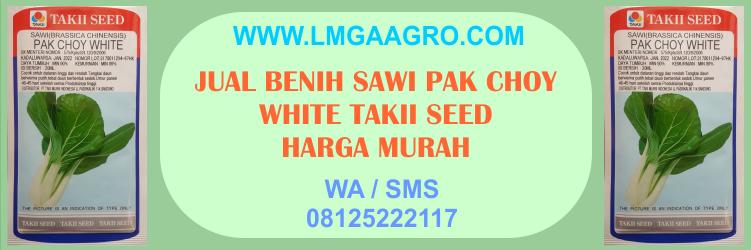 Jual Benih Sawi Pak Choy White Takii Seed Harga Murah