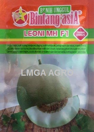 Benih Melon Leoni MH F1