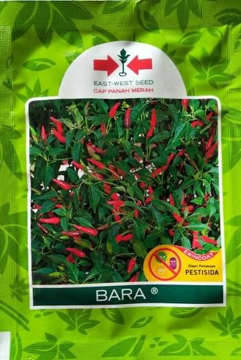 cabe rawit,benih cabe,cap panah merah,panah merah,budidaya cabe,cabe bara,bara