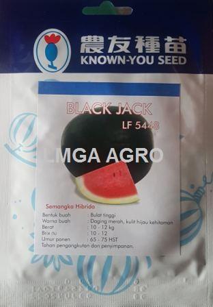 Semangkan Black Jack,Benih Semangka F1 Black Jack,LMGA AGRO,semangka berbiji,benih semangka berbiji