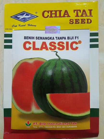 semangka classic,semangka merah,buah semangka,semangka,semangka tanpa biji,benih semangka,bibit semangka,lmga agro,cap kapal terbang