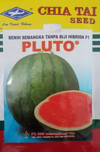 semangka pluto,buah semangka,benih semangka,bibit semangka,semangka,semangka merah,lmga agro,cap kapal terbang
