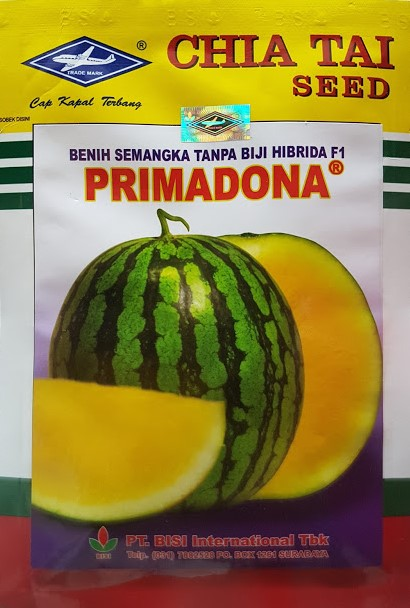 semangka primadona,semangka kuning,semangka,buah semangka,benih semangka,cap kapal terbang,semangka tanpa biji,semangka,lmga agro