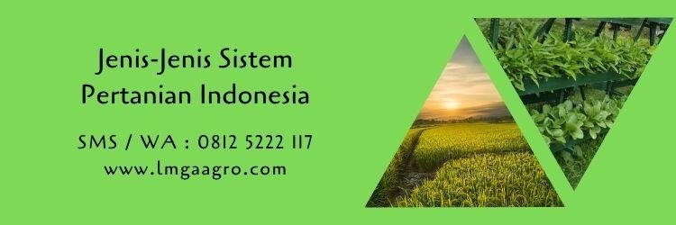 sistem pertanian,budidaya tanaman,usaha pertanian,perkebunan,lahan pertanian,sawah,benih tanaman,lmga agro