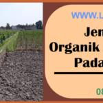 Jenis Pupuk Organik dan Anorganik Pada Pertanian