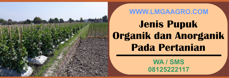 jenis pupuk, pupuk, organik, anorganik, pertanian