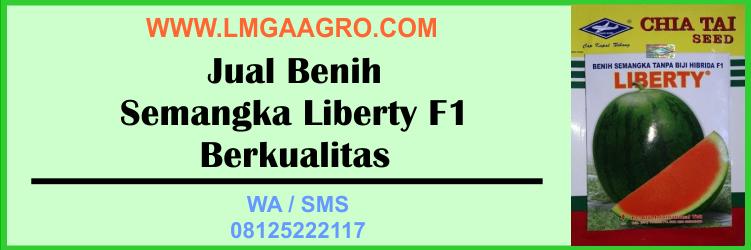 Jual Benih Semangka Liberty F1 Berkualitas