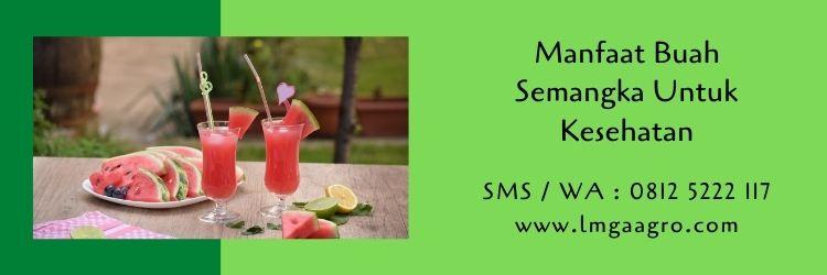 semangka,buah semangka,semangka kuning,budidaya semangka,benih semangka,pertanian,LMGA Agro