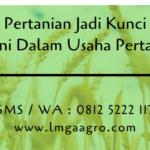 Sistem Pertanian Jadi Kunci Sukses Petani Dalam Usaha Pertanian