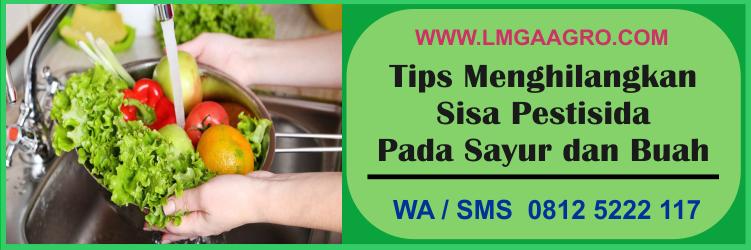 tips, menghilangkan, sisa, pestisida, pada, sayur, buah