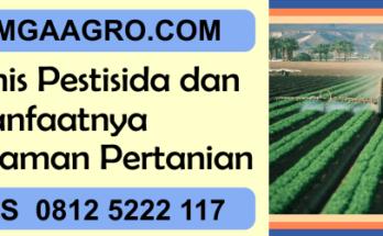 Jenis, jenis, pestisida, manfaat, tanaman, pertanian
