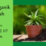 Kompos, Pupuk Organik Pembuatan Mudah Favorit Petani