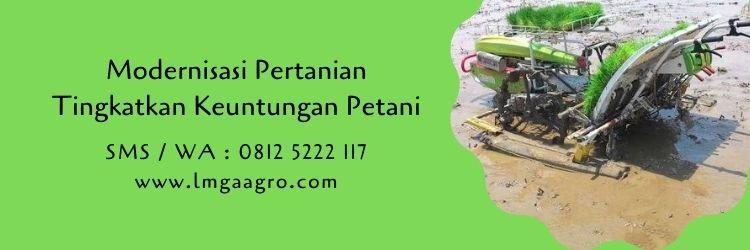 modernisasi,pertanian,petani,budidaya tanaman,peluang usaha,budidaya hidroponik,hidroponik,metode hidroponik,lmga agro