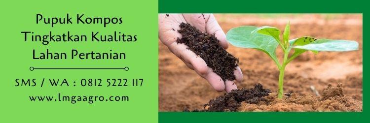 kompos,pupuk kompos,pupuk organik,pertanian organik,petani,lmga agro