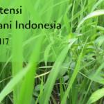 Tanaman Gulma Potensi Merugikan Bagi Petani Indonesia