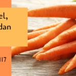 Tanaman Wortel, Sayuran Favorit dan Bermanfaat