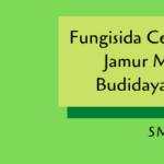 Fungisida Cegah Serangan Jamur Merugikan Budidaya Tanaman