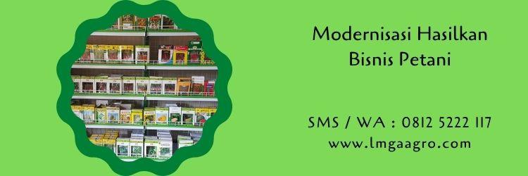modernisasi,budidaya tanaman,benih tanaman,bisnis petani,usaha pertanian,petani,lmga agro