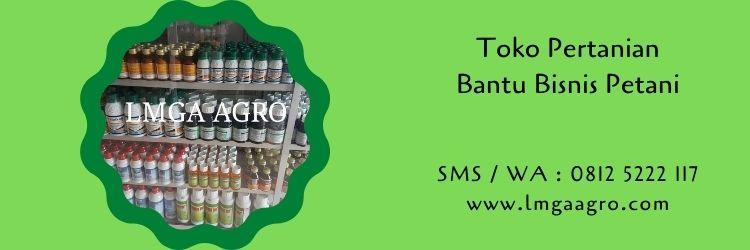 toko pertanian,toko pertanian online,toko online,usaha pertanian,bisnis petani,petani,pertanian,lmga agro