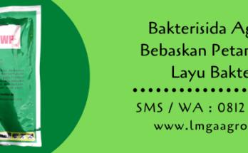 bakterisida,bakterisida agrept,budidaya tanaman,petani,pertanian,lmga agro