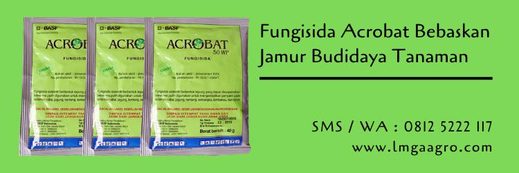 Jual Fungisida Acrobat Bebaskan Tanaman Dari Jamur