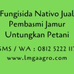 Jual Fungisida Nativo Bayer Pembasmi Jamur Untungkan Petani