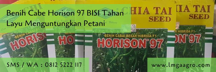 Benih Cabe Horison 97 BISI Tahan Layu Menguntungkan Petani