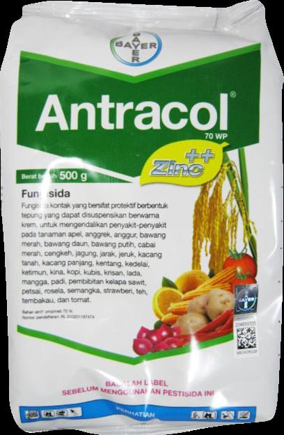fungisida,fungisida antracol,pestisida