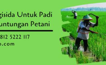 macam fungisida untuk padi,fungisida padi,fungisida,petani,lmga agro