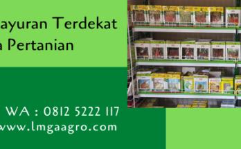 toko bibit sayuran terdekat,toko pertanian,toko online,bibit sayuran,lmga agro
