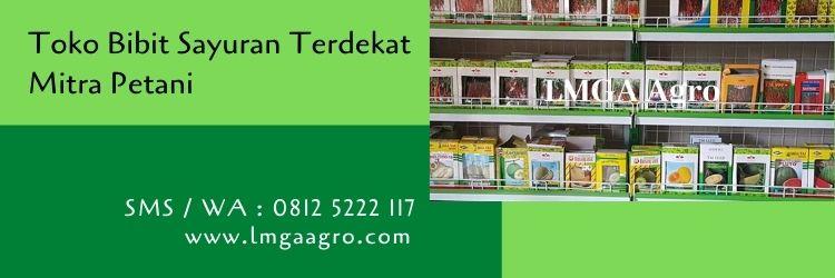 toko bibit sayuran terdekat,bibit sayuran,petani,pertanian,lmga agro