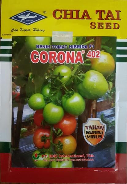 tomat corona 402,benih tomat,budidaya tomat