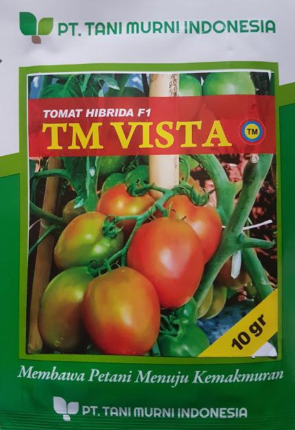 Baru Tomat  GUSTAVI F1 Benih Panah Merah