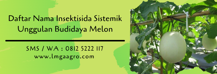 daftar nama insektisida sistemik,budidaya melon,benih melon,lmga agro