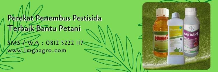 perekat penembus pestisida terbaik,perekat pestisida,budidaya tanaman,petani,lmga agro