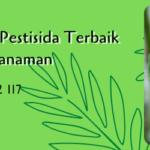 Perekat Penembus Pestisida Terbaik Untuk Budidaya Tanaman