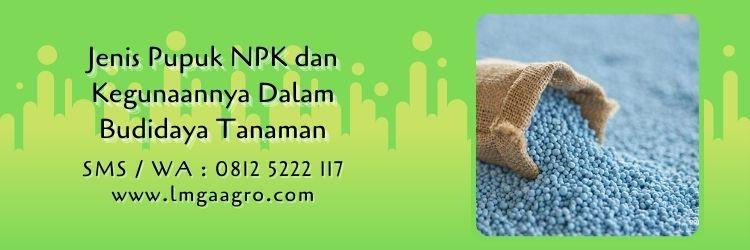 jenis pupuk npk dan kegunaannya,pupuk npk,pemupukan,budidaya tanaman,lmga agro