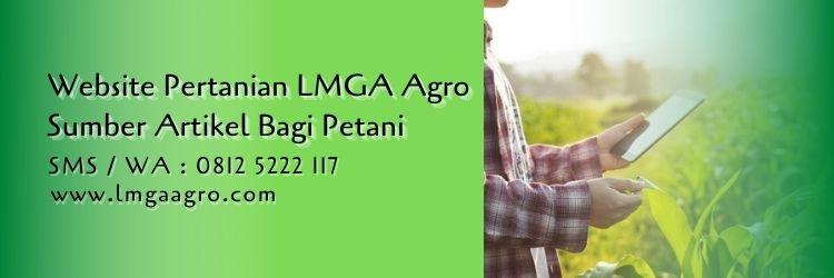 Website Pertanian LMGA Agro Sumber Artikel Bagi Petani