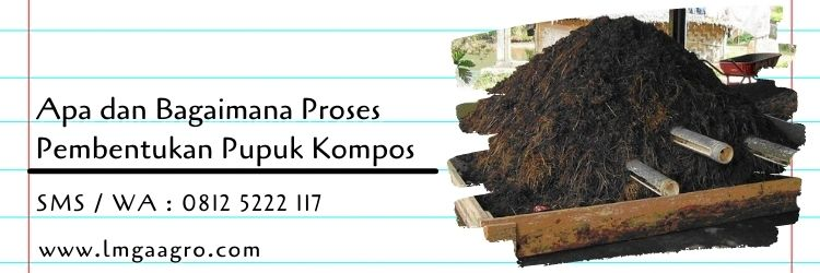 bagaimana proses pembentukan pupuk kompos,pupuk kompos,budidaya tanaman,pemupukan,pupuk organik,lmga agro