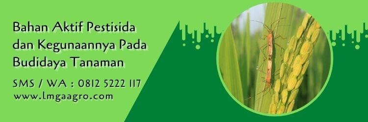 bahan aktif pestisida dan kegunaannya,pestisida,hama tanaman,obat hama,budidaya tanaman,petani,lmga agro