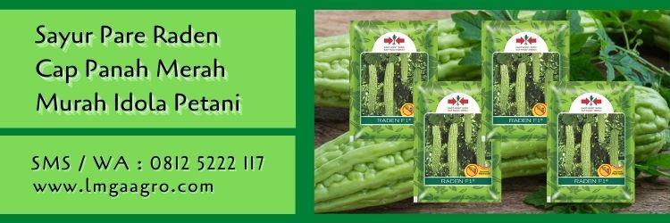 sayur pare raden,sayur pare,benih pare,benih paria,cap panah merah,lmga agro
